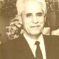 Ali Feres Messmar